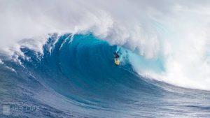 Big Wave Maui