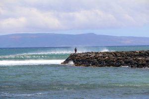 Maui Harbor Wave