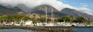 West Maui copy
