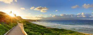 Maui Buyer Rep
