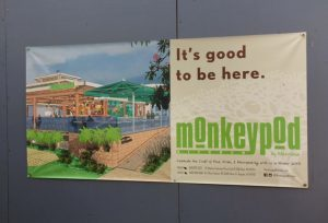 Monkey Pod coming to Whalers Village