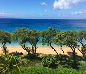 Oceanfront Land in Kaanapali Maui