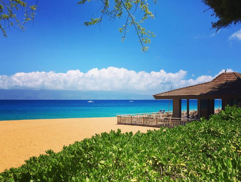 Maui Vacation Rentals in the Finest Beach Resorts. Choose from some 60 top-rated condos managed by Maui's most trusted, local choice for short-term vacation rentals. Get in touch today and let our experienced property specialists guide you to the perfect vacation condo in Maui, Hawaii.