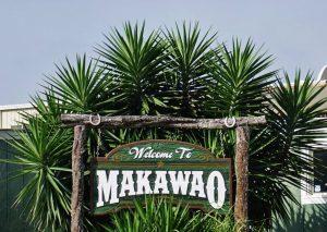 makawao-sign-2