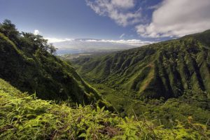 maui-untouched-small-town